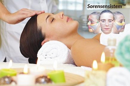 www-sorensensistem